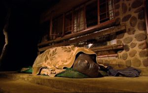 After a massage & dinner Jessica drifts off to sleep under her blanket
